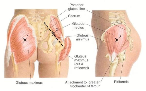 Low Back Pain   Healing By Yang